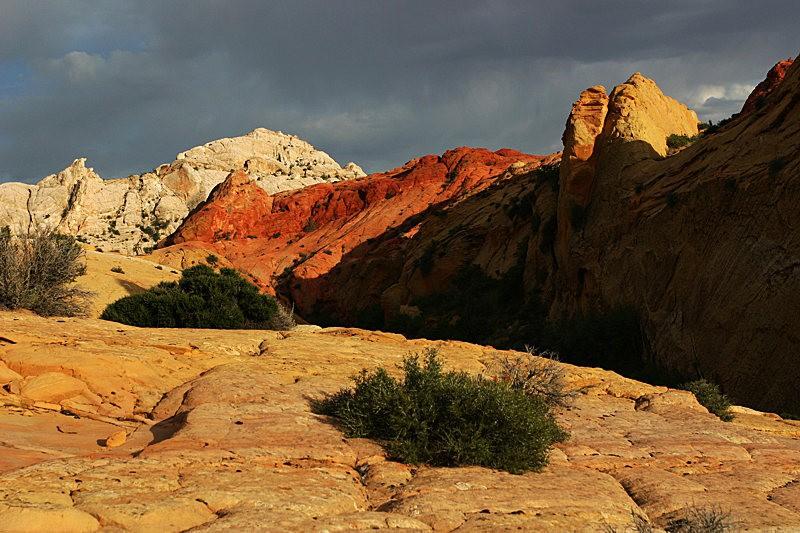 棉花木峡谷之------红岩,白岩与黄岩_图1-15
