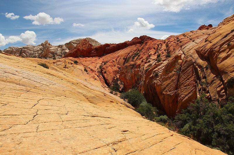 棉花木峡谷之------红岩,白岩与黄岩_图1-18