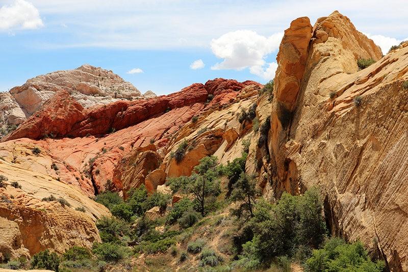 棉花木峡谷之------红岩,白岩与黄岩_图1-19