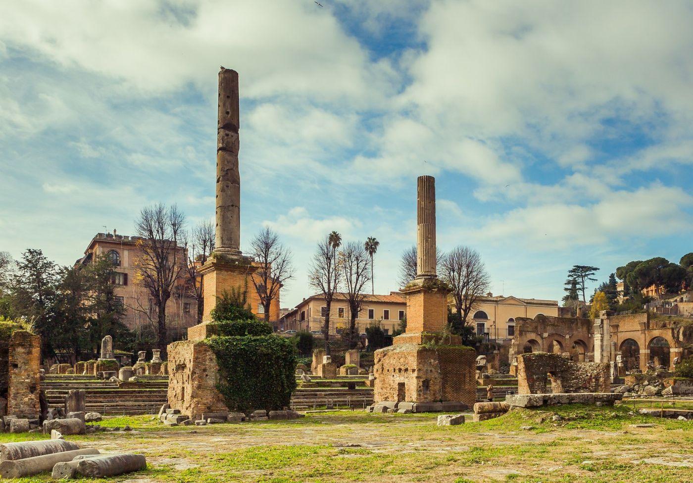 意大利罗马论坛,二千年的历史_图1-31
