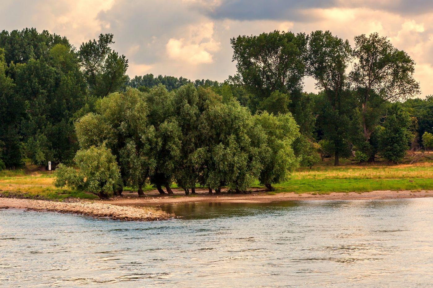 畅游莱茵河,两岸即景_图1-36