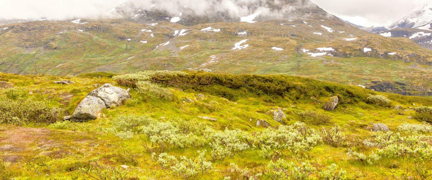 北欧风光,蜿蜒的小道_图1-18