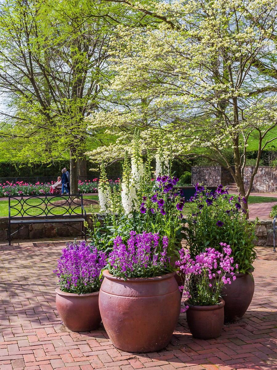 宾州长木公园,景色处处有_图1-35