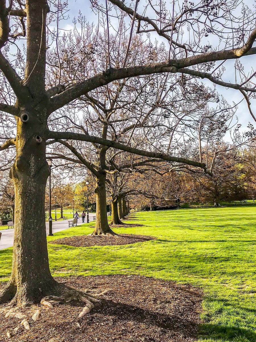 宾州长木公园,景色处处有_图1-33
