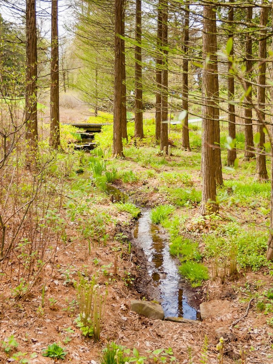 宾州长木公园,景色处处有_图1-36
