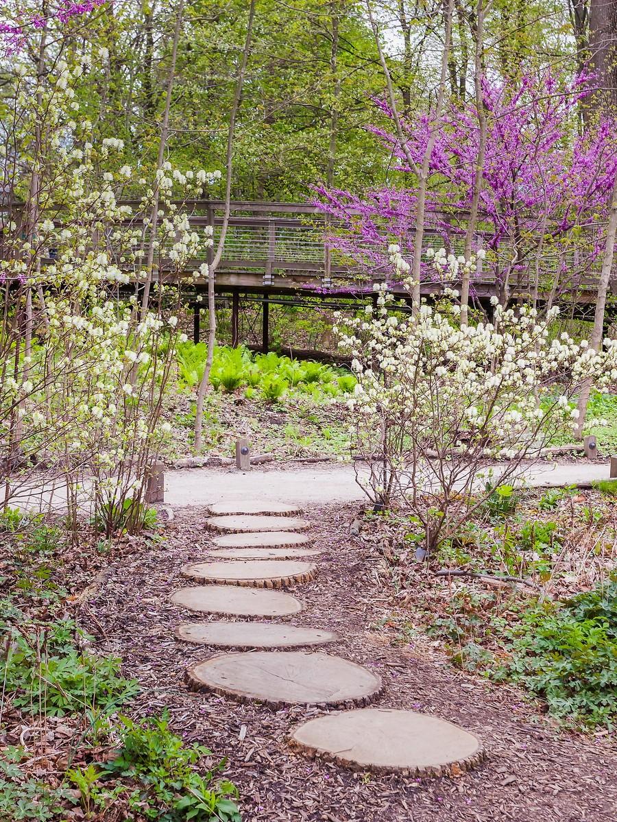 宾州长木公园,景色处处有_图1-34