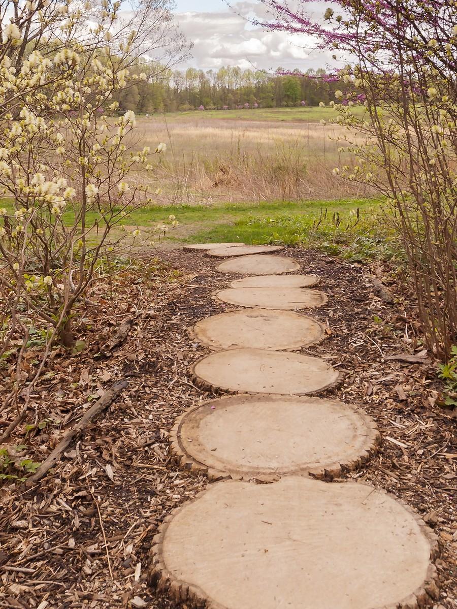 宾州长木公园,景色处处有_图1-26