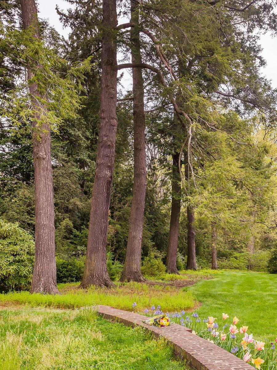 宾州长木公园,景色处处有_图1-21