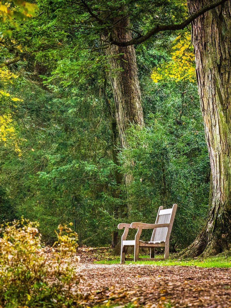 宾州长木公园,景色处处有_图1-22