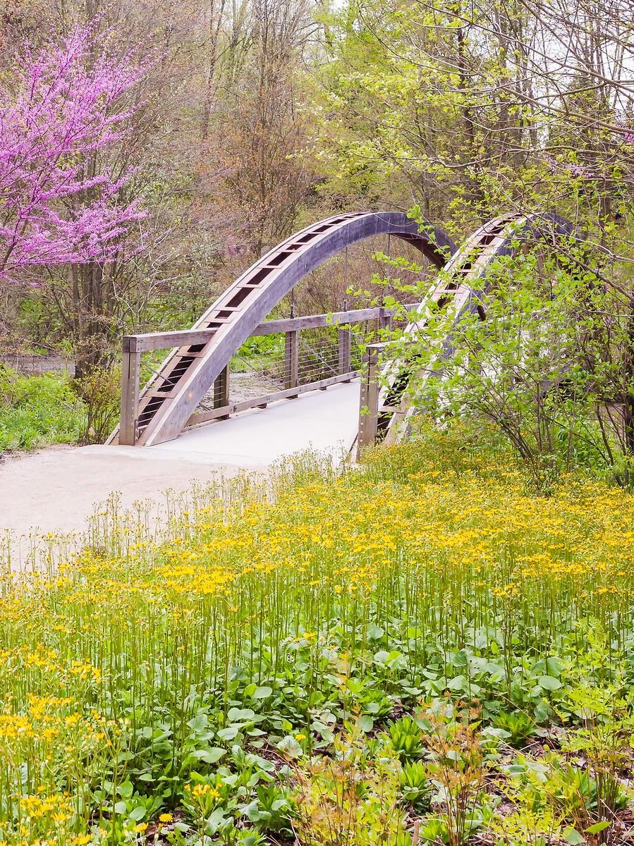 宾州长木公园,景色处处有_图1-23