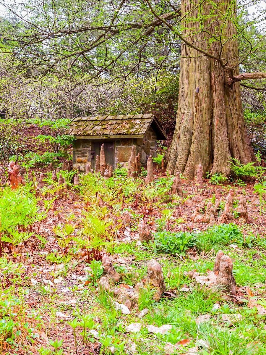 宾州长木公园,景色处处有_图1-20