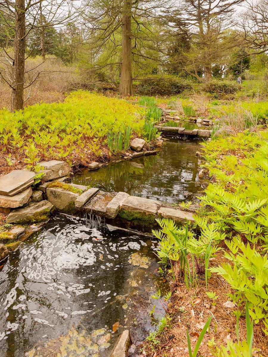 宾州长木公园,景色处处有_图1-19