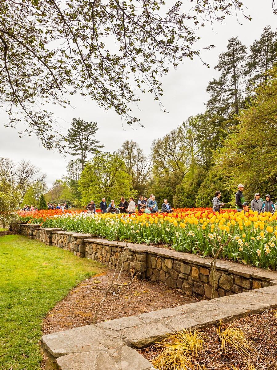 宾州长木公园,景色处处有_图1-18