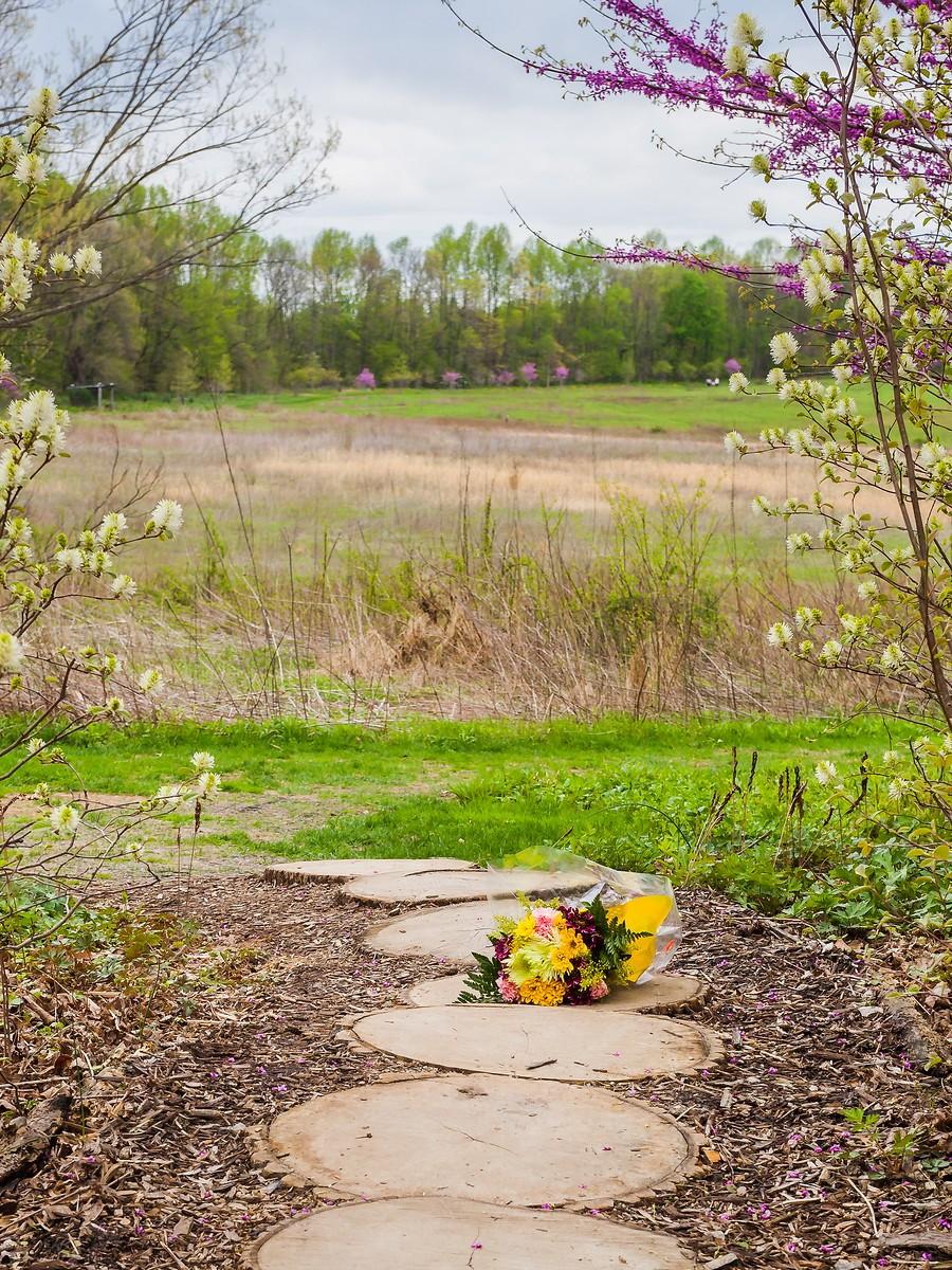 宾州长木公园,景色处处有_图1-17