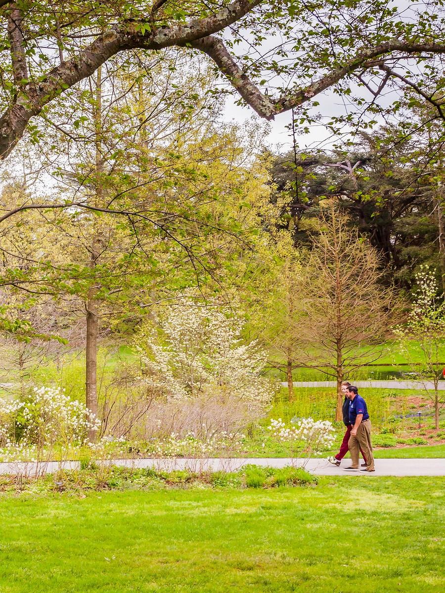 宾州长木公园,景色处处有_图1-3