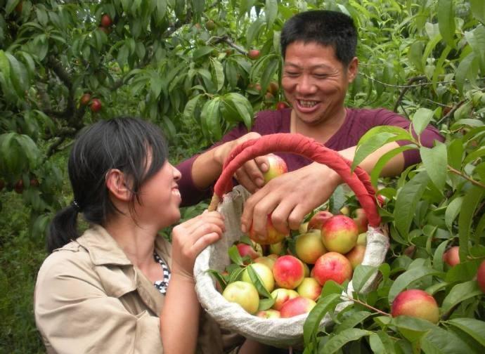 中国人在农村有房的恭喜你有好事了!国家新政策来了、这下身价要涨了 ..._图1-5