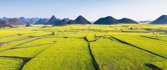 中国人在农村有房的恭喜你有好事了!国家新政策来了、这下身价要涨了 ..._图1-10