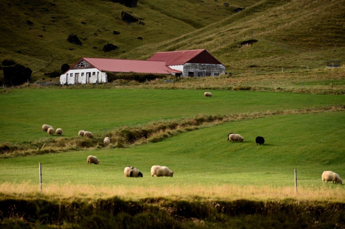 冰岛之旅_图1-29