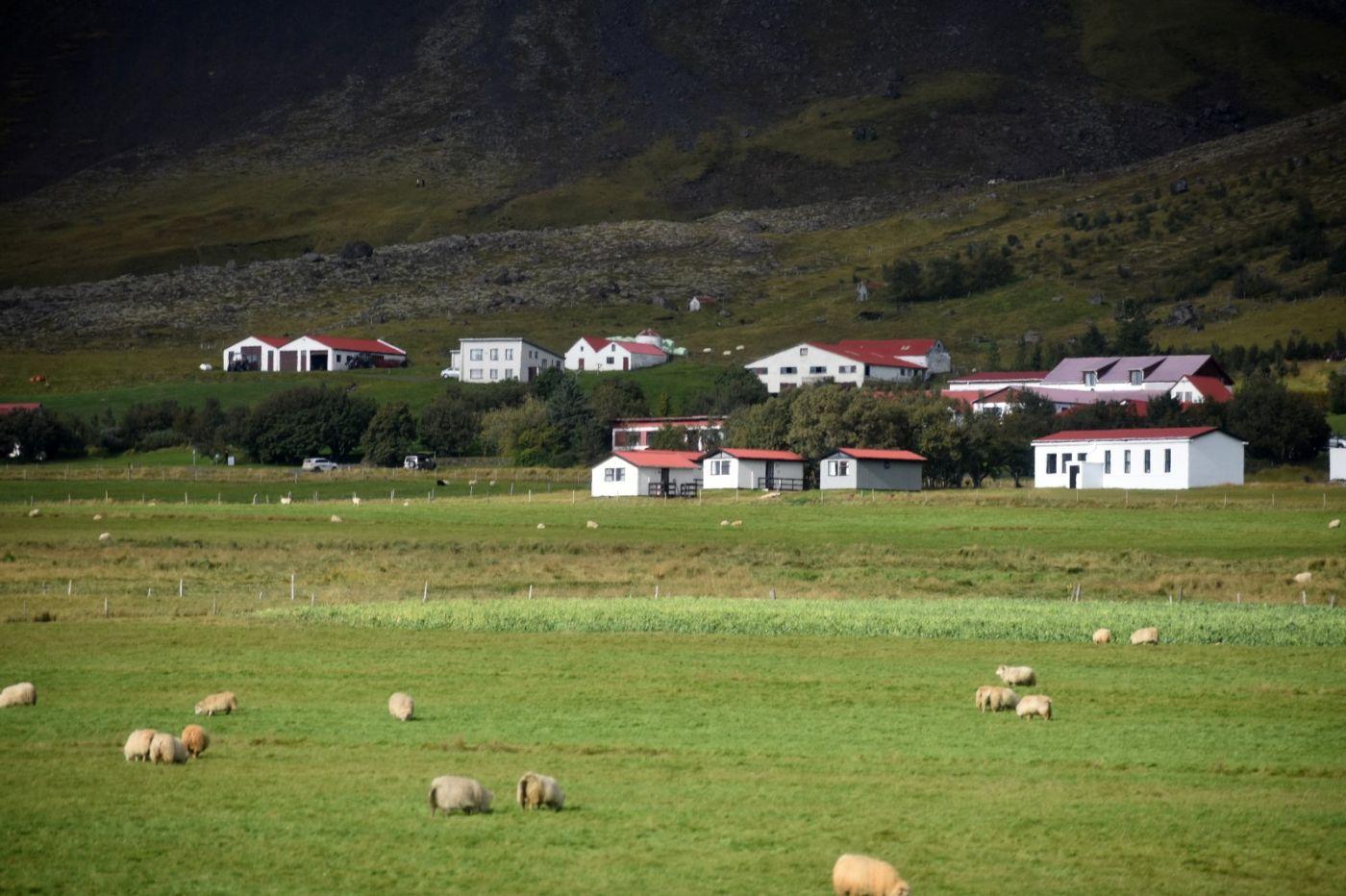 冰岛之旅_图1-34