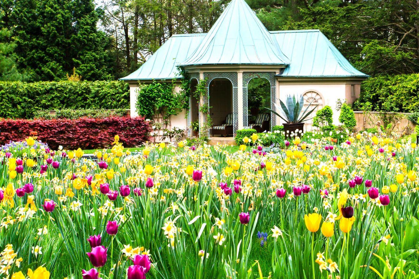 Chanticleer花园,花房泳池_图1-34