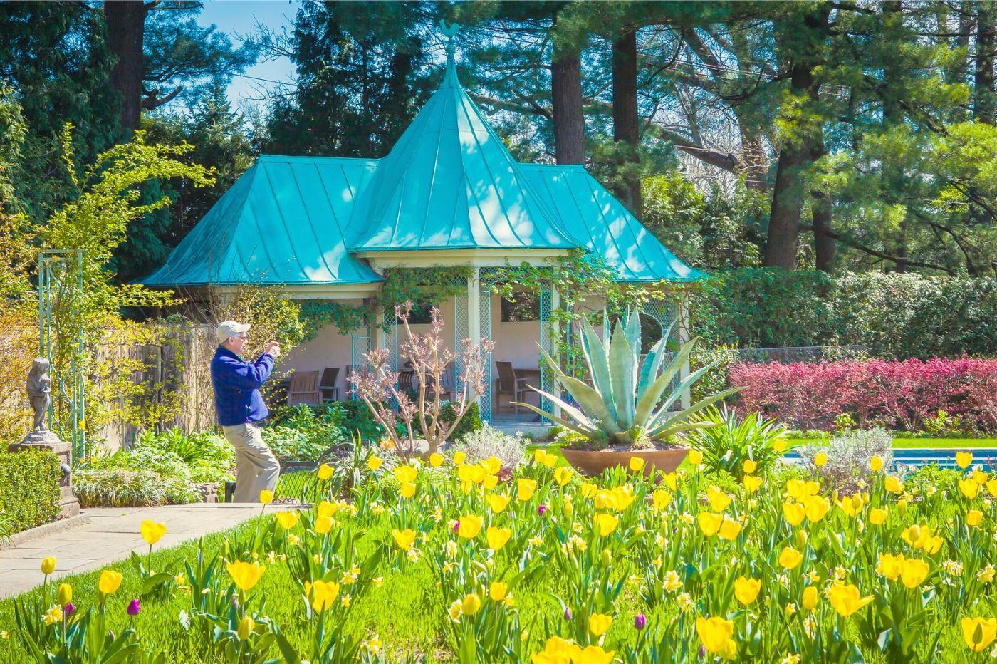 Chanticleer花园,花房泳池_图1-23