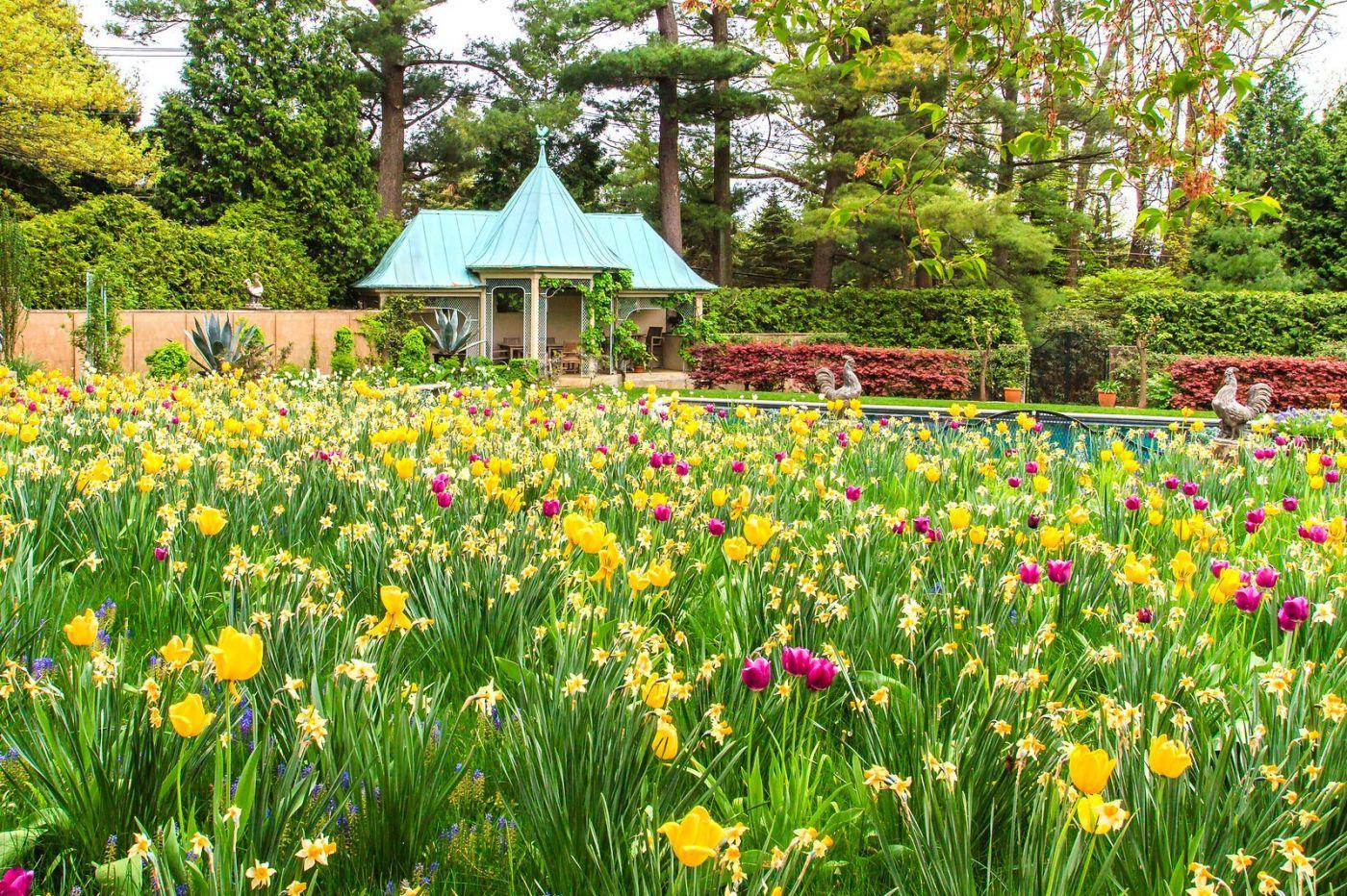 Chanticleer花园,花房泳池_图1-26