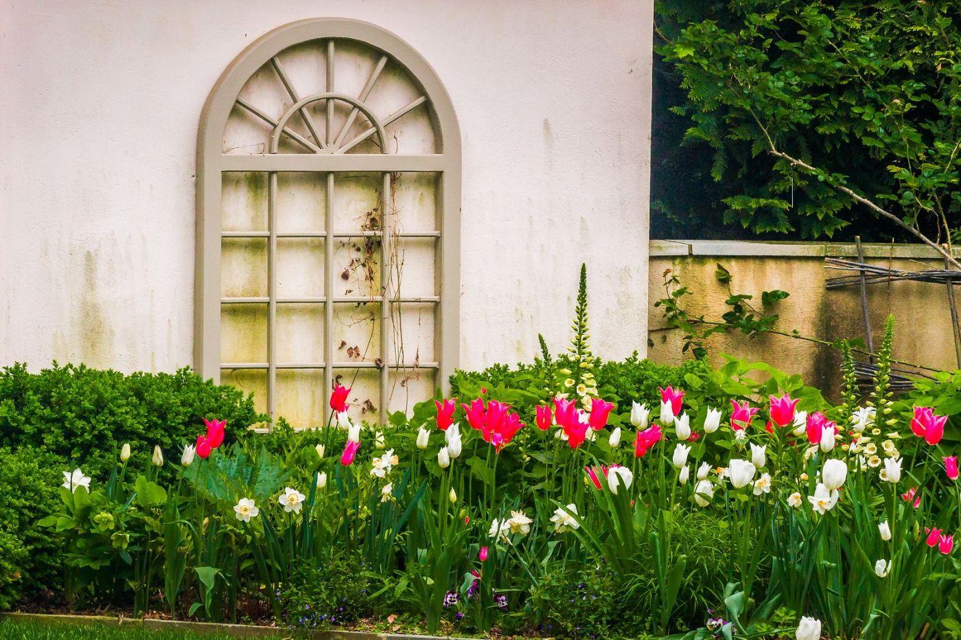 Chanticleer花园,花房泳池_图1-21