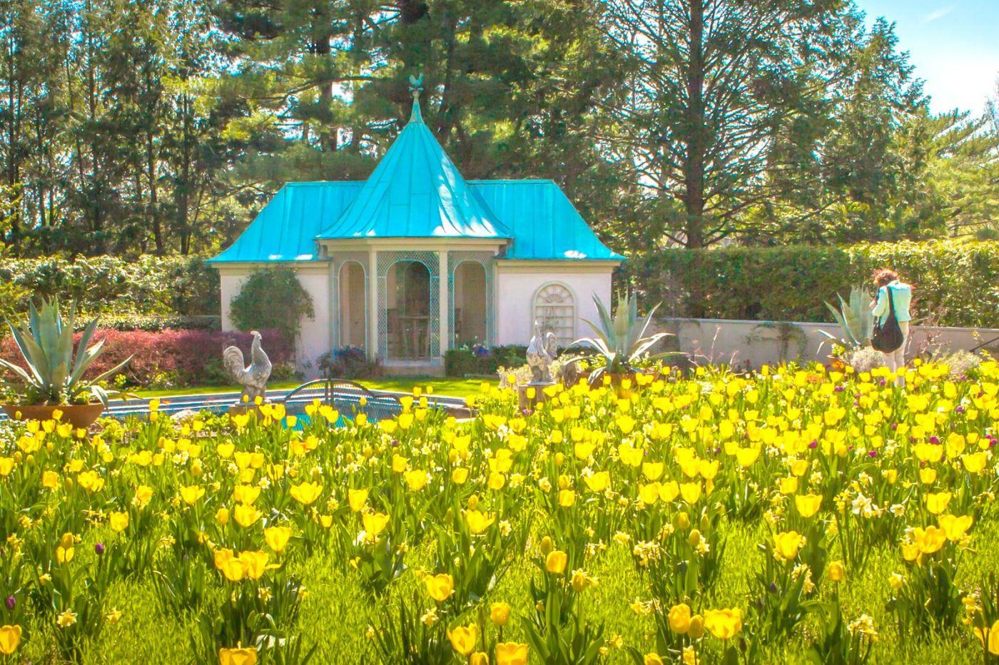 Chanticleer花园,花房泳池_图1-5