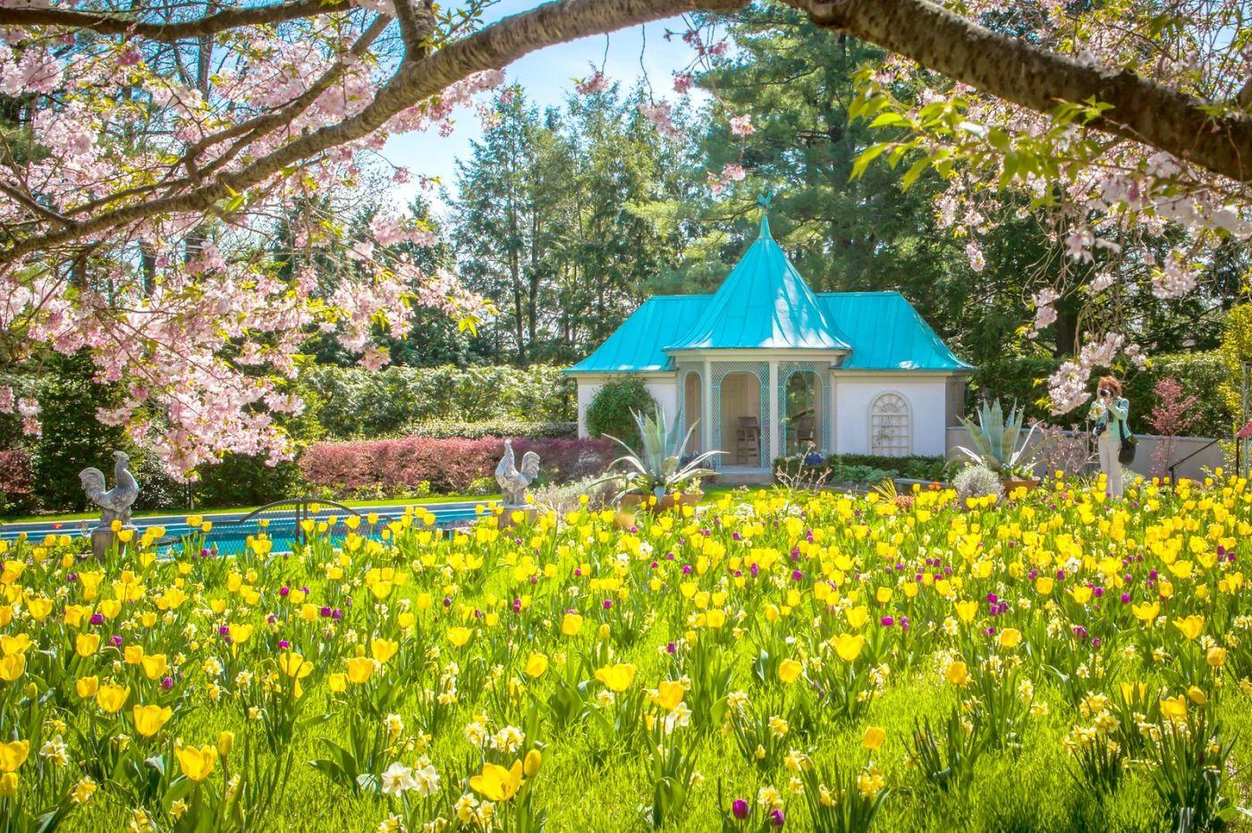 Chanticleer花园,花房泳池_图1-12