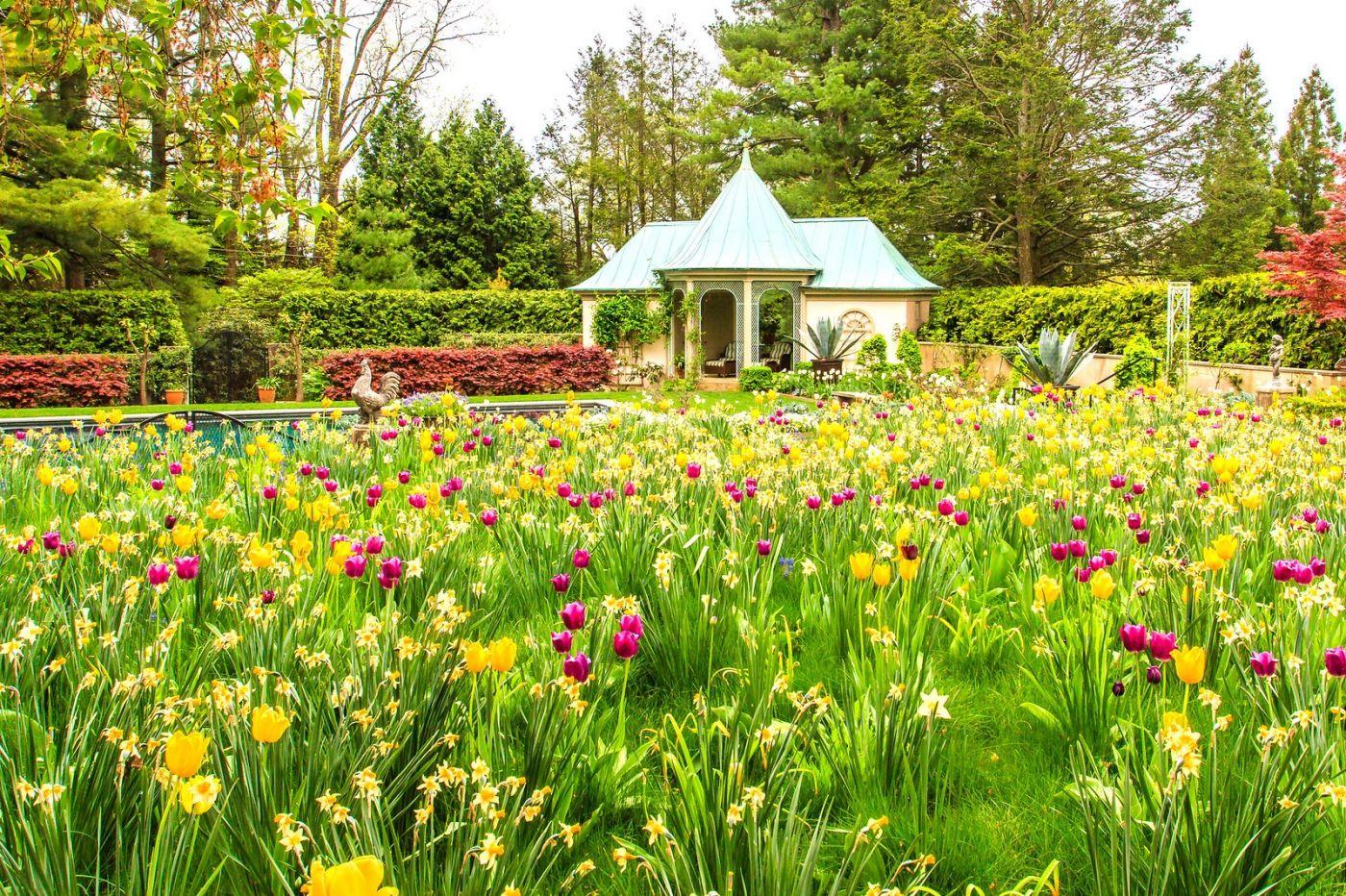 Chanticleer花园,花房泳池_图1-11