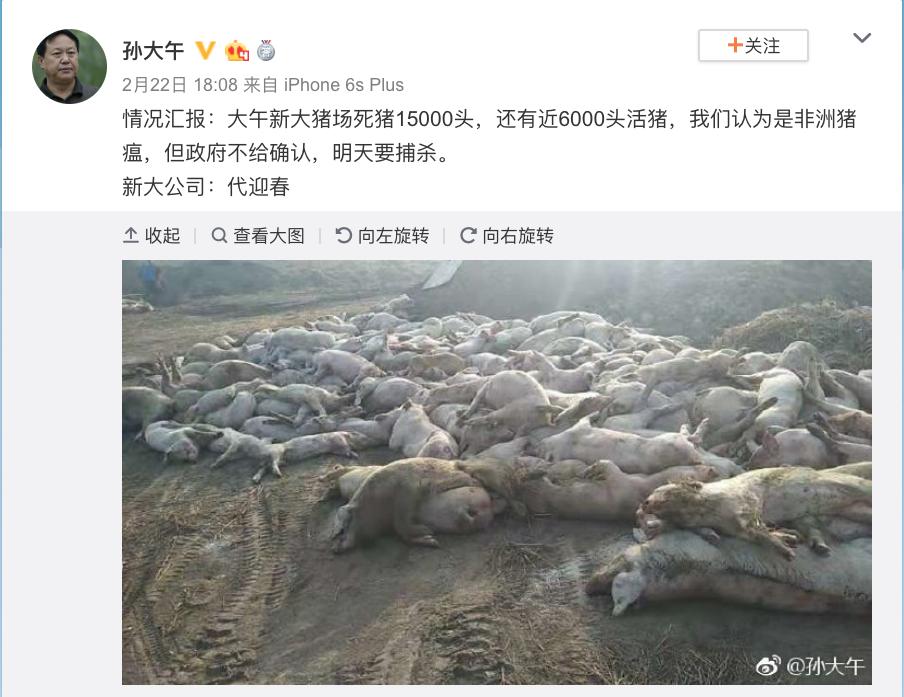 """中国爆发的""""非洲猪瘟""""究竟有多严重?_图1-2"""