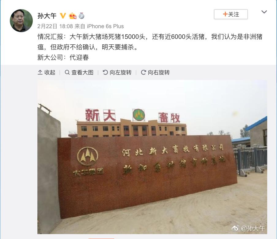 """中国爆发的""""非洲猪瘟""""究竟有多严重?_图1-1"""