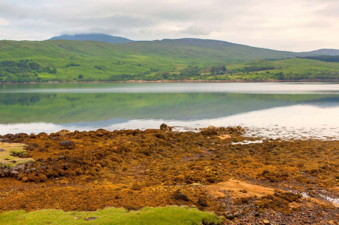 苏格兰美景,弯弯的沙滩_图1-39