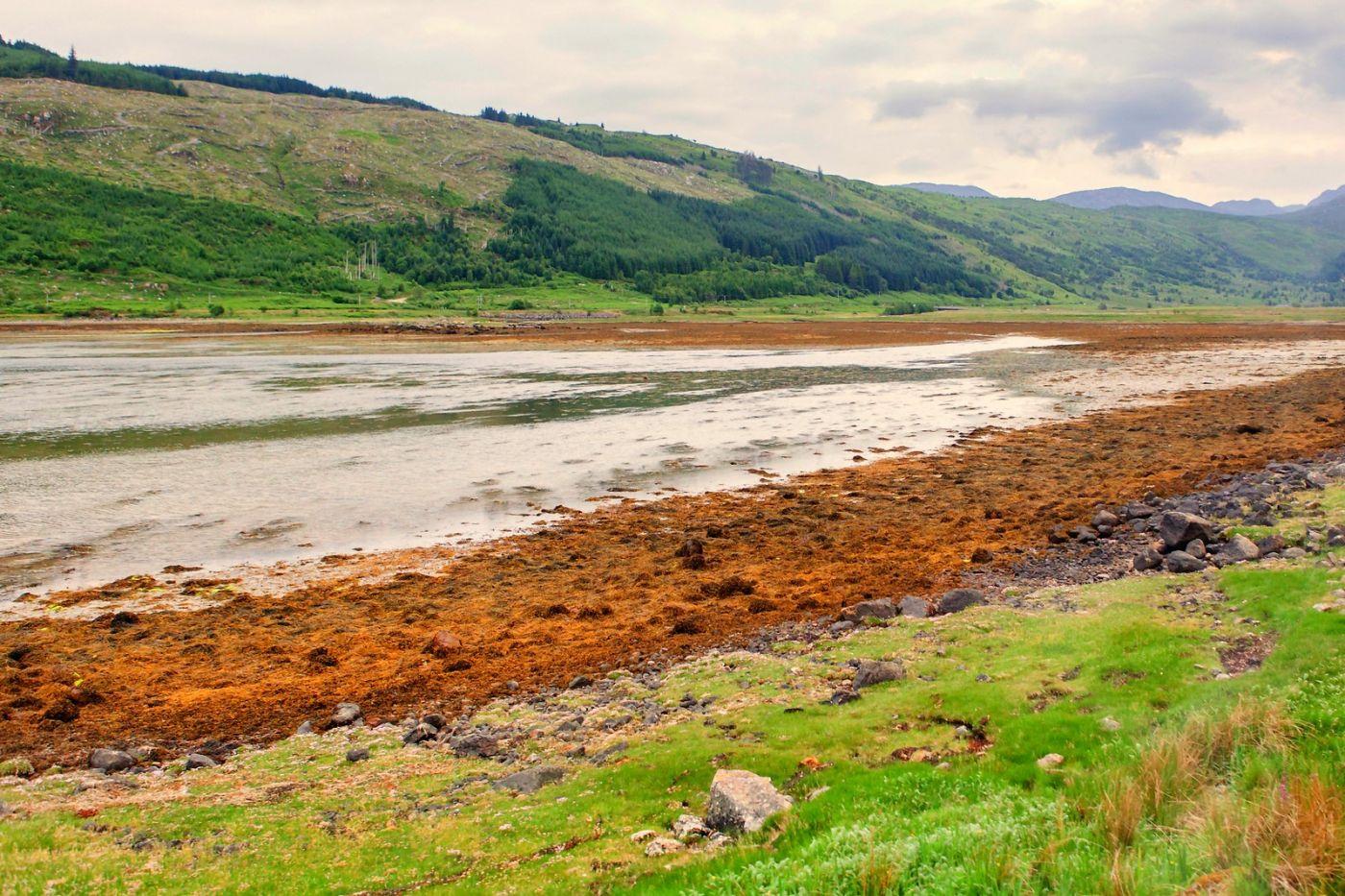 苏格兰美景,弯弯的沙滩_图1-14