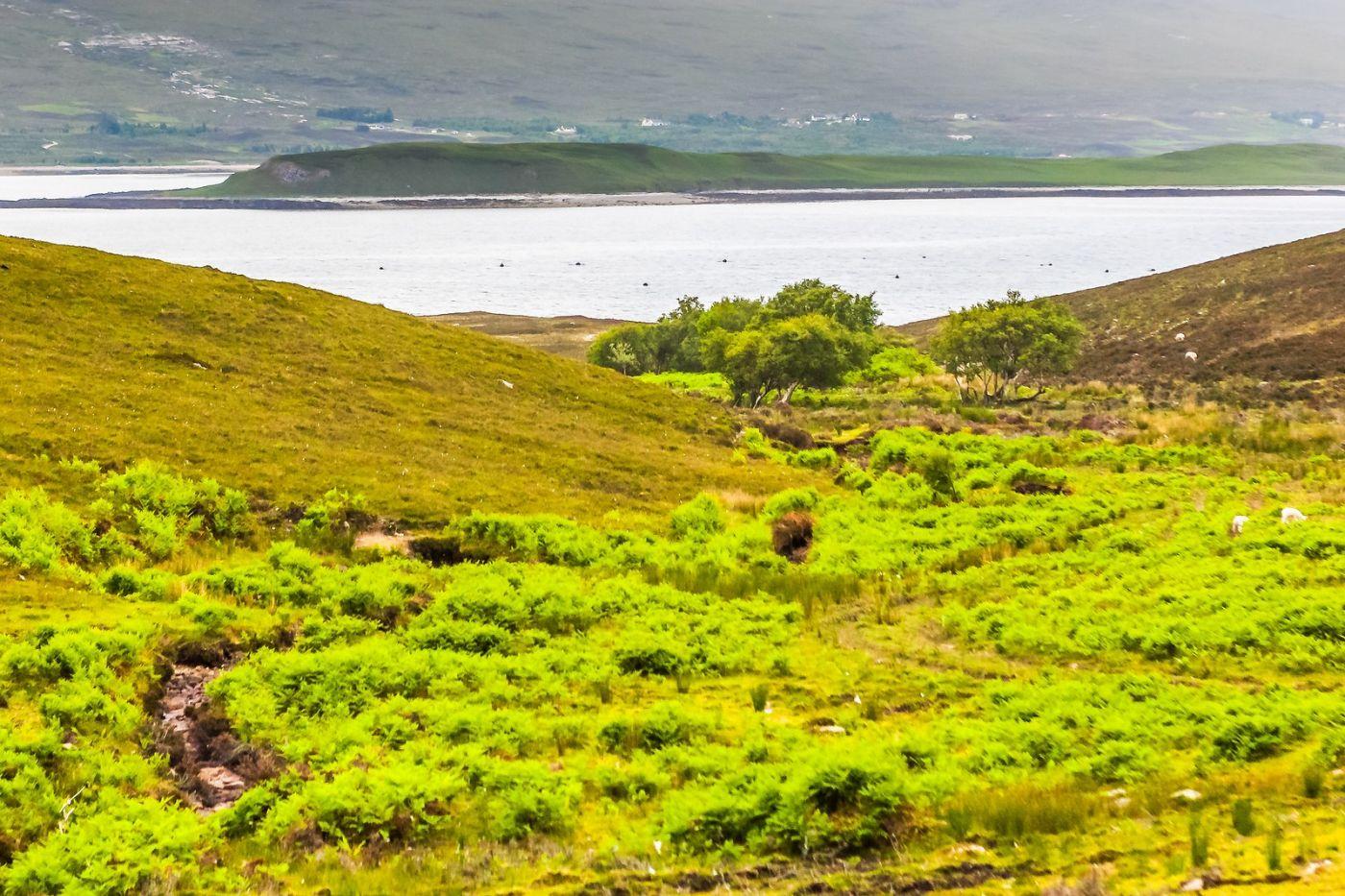 苏格兰美景,弯弯的沙滩_图1-34