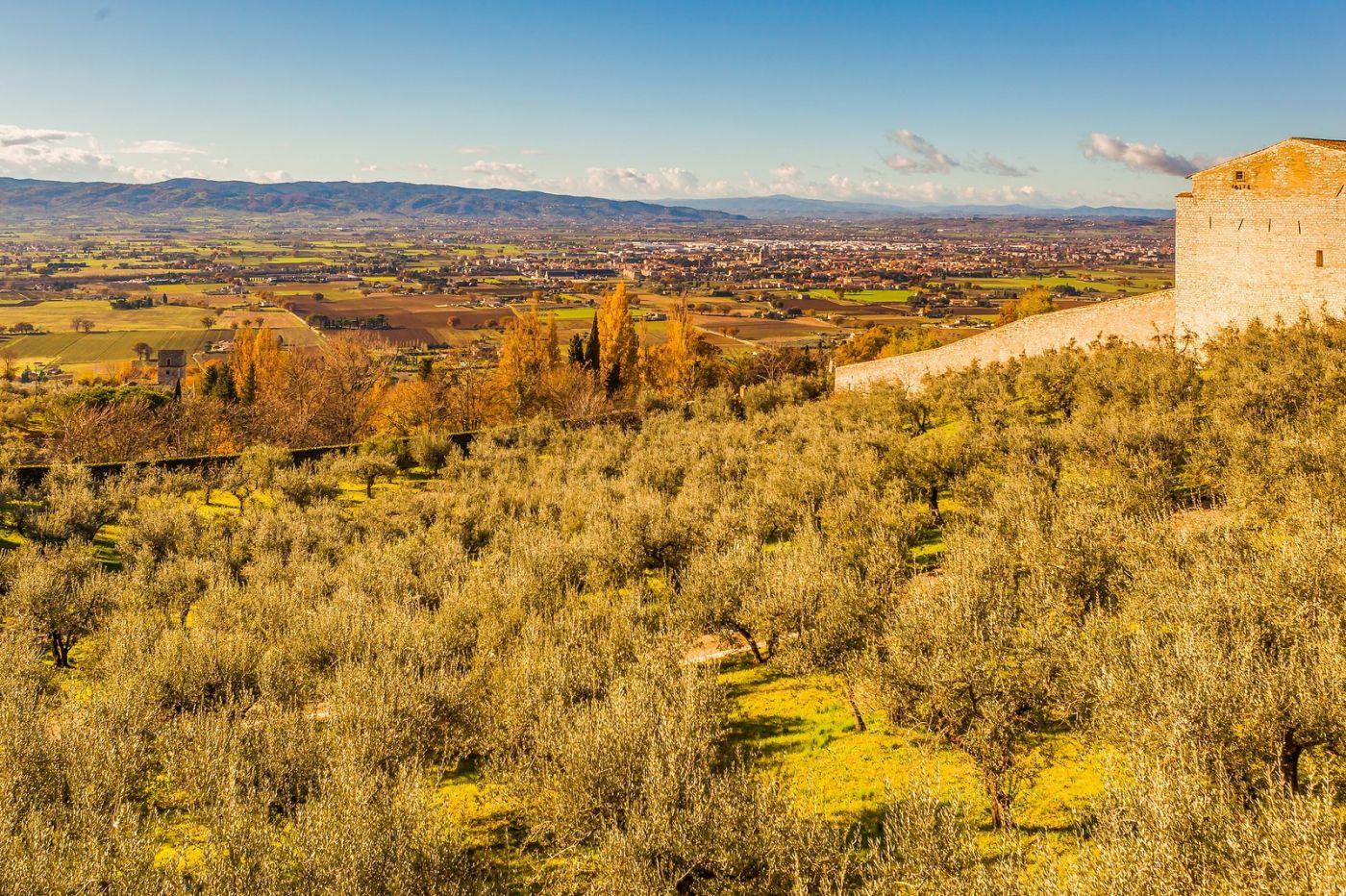 意大利阿西西(Assisi), 登高放眼_图1-2