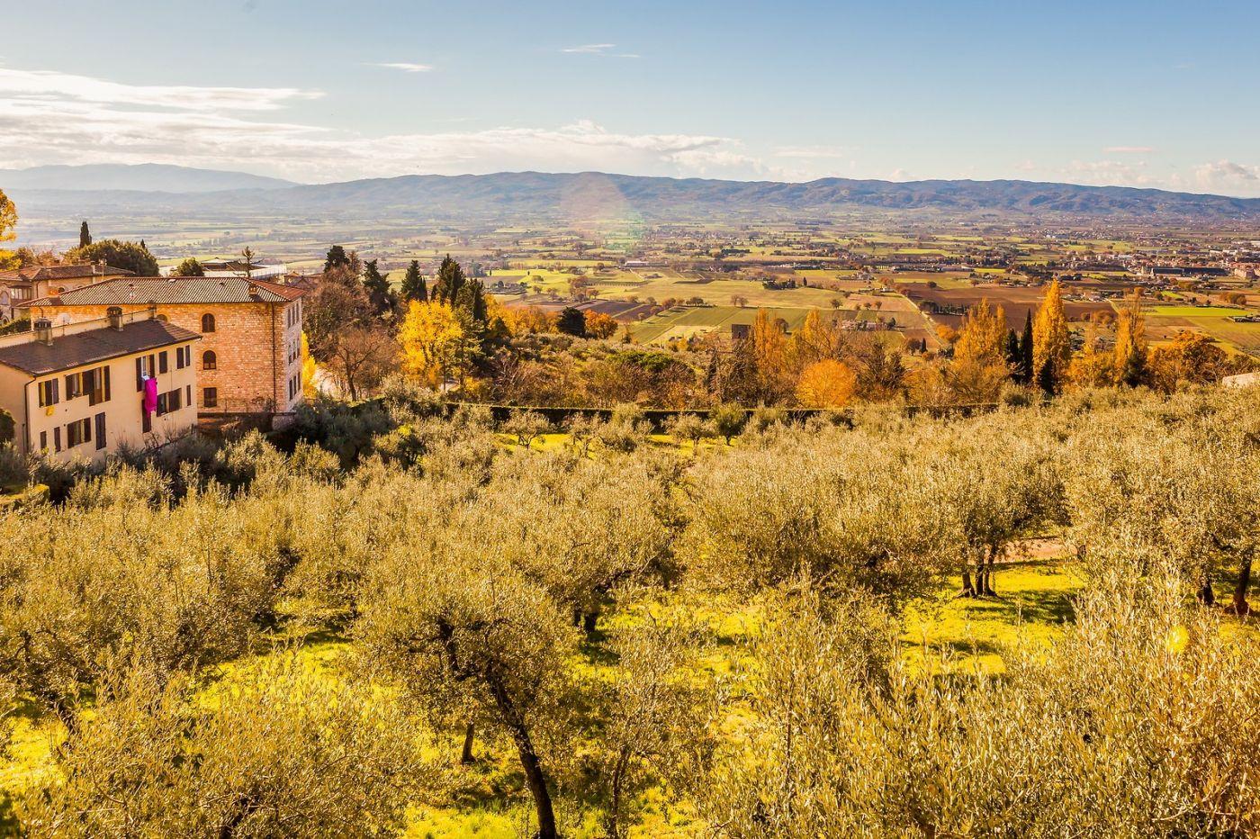 意大利阿西西(Assisi), 登高放眼_图1-11