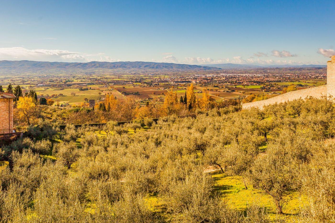 意大利阿西西(Assisi), 登高放眼_图1-12