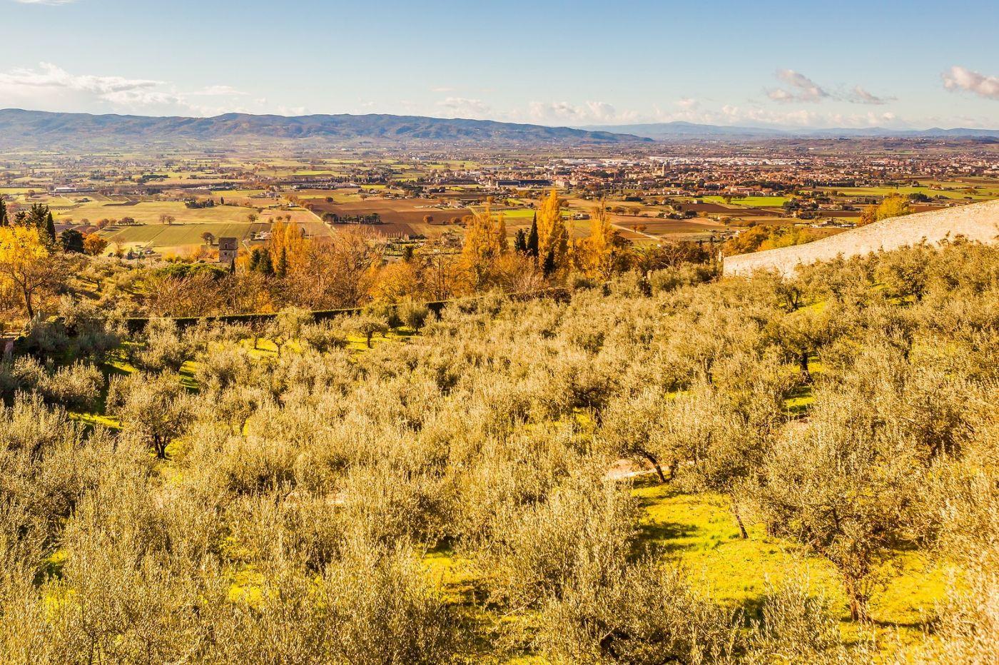 意大利阿西西(Assisi), 登高放眼_图1-23