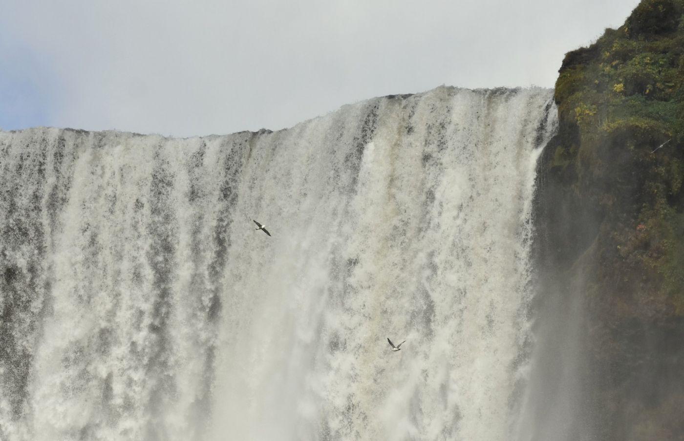 冰岛水帘洞瀑布和彩虹瀑布_图1-30