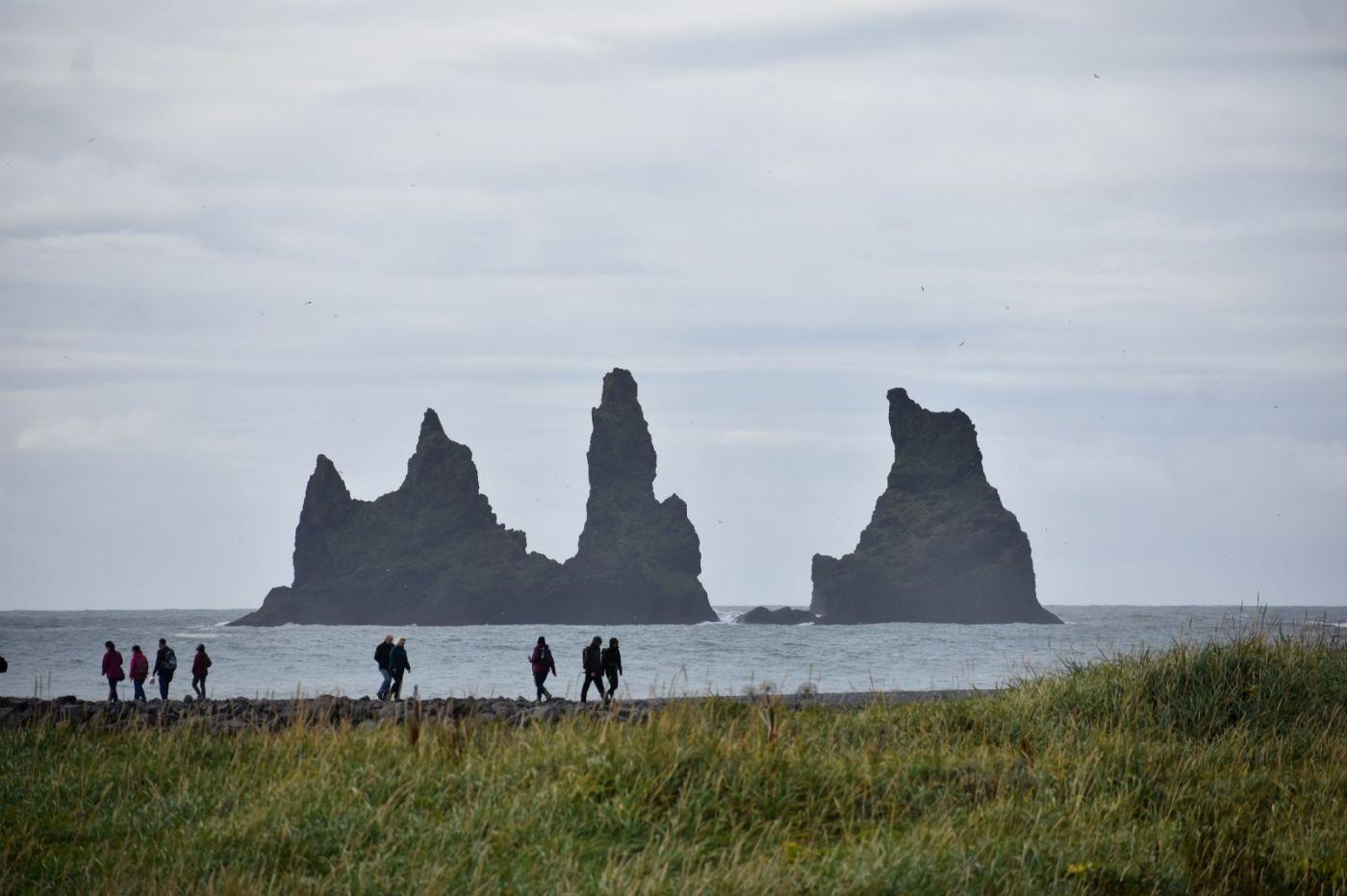 冰岛维克镇和雷尼斯黑沙滩_图1-19