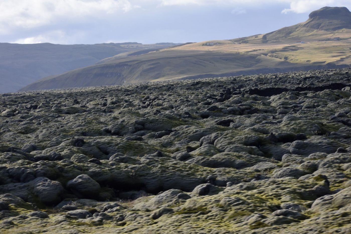 冰岛蓝湖温泉和苔原_图1-26