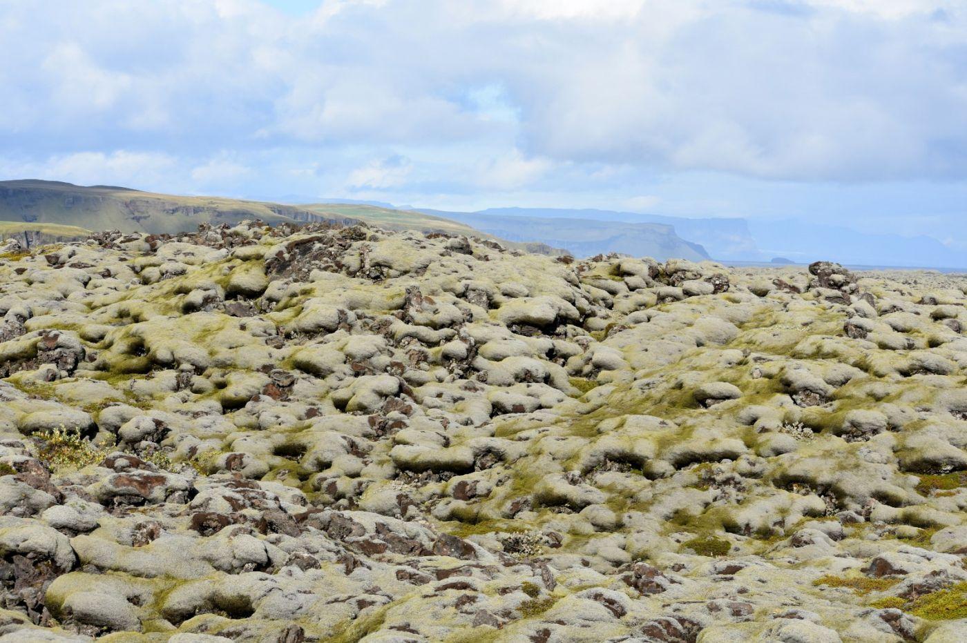冰岛蓝湖温泉和苔原_图1-28