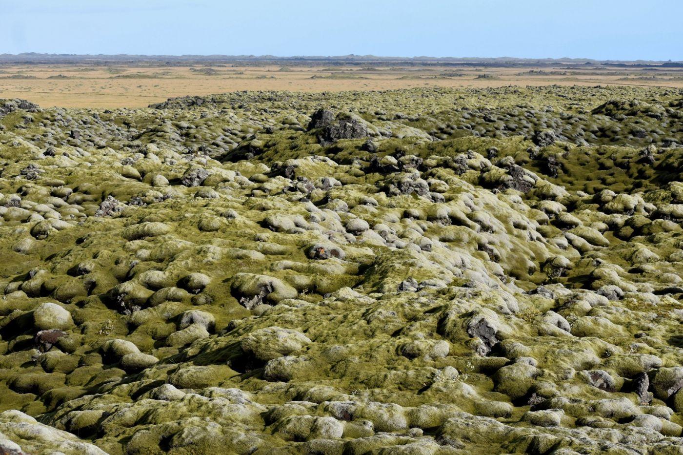 冰岛蓝湖温泉和苔原_图1-32