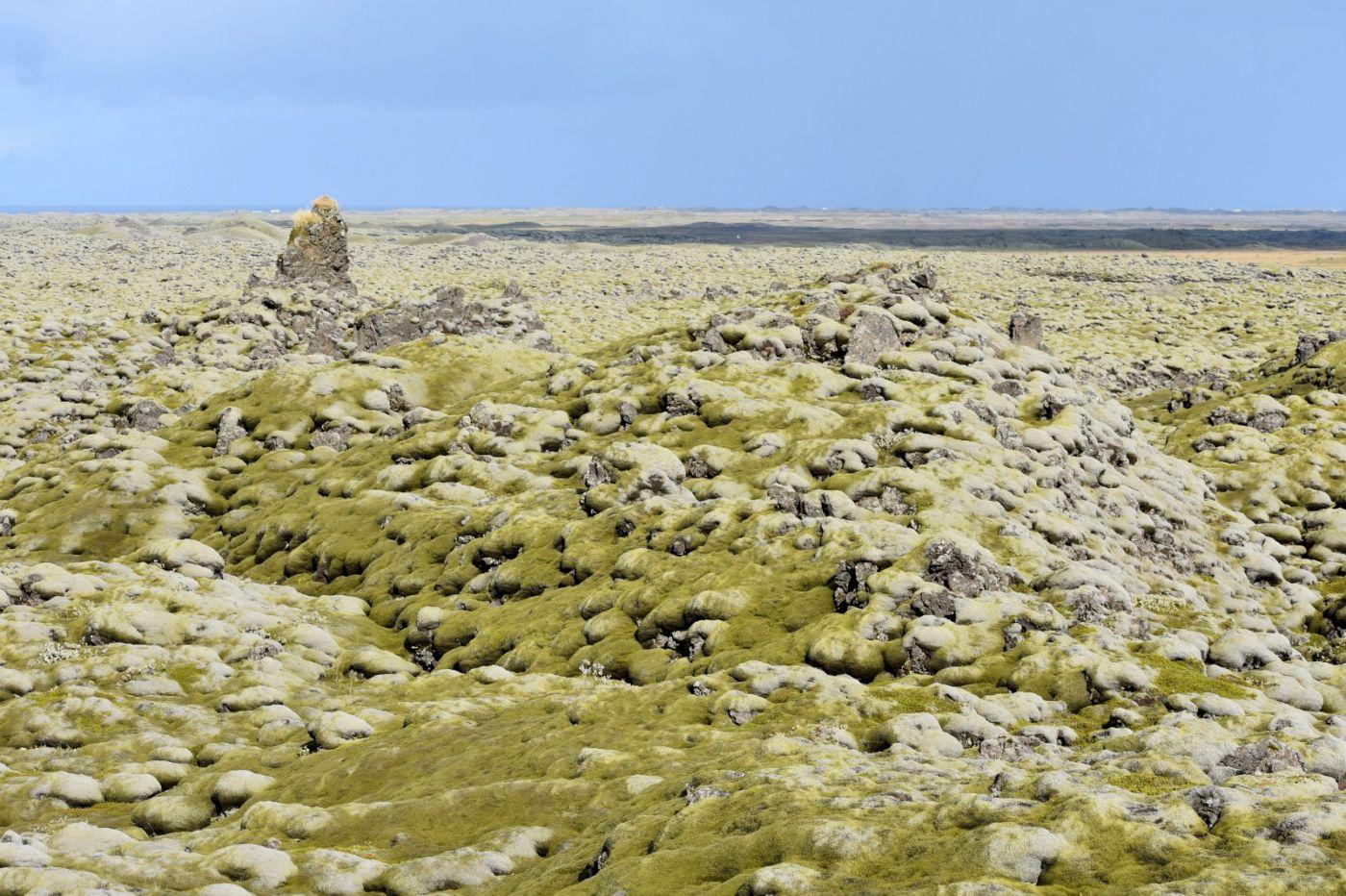 冰岛蓝湖温泉和苔原_图1-33
