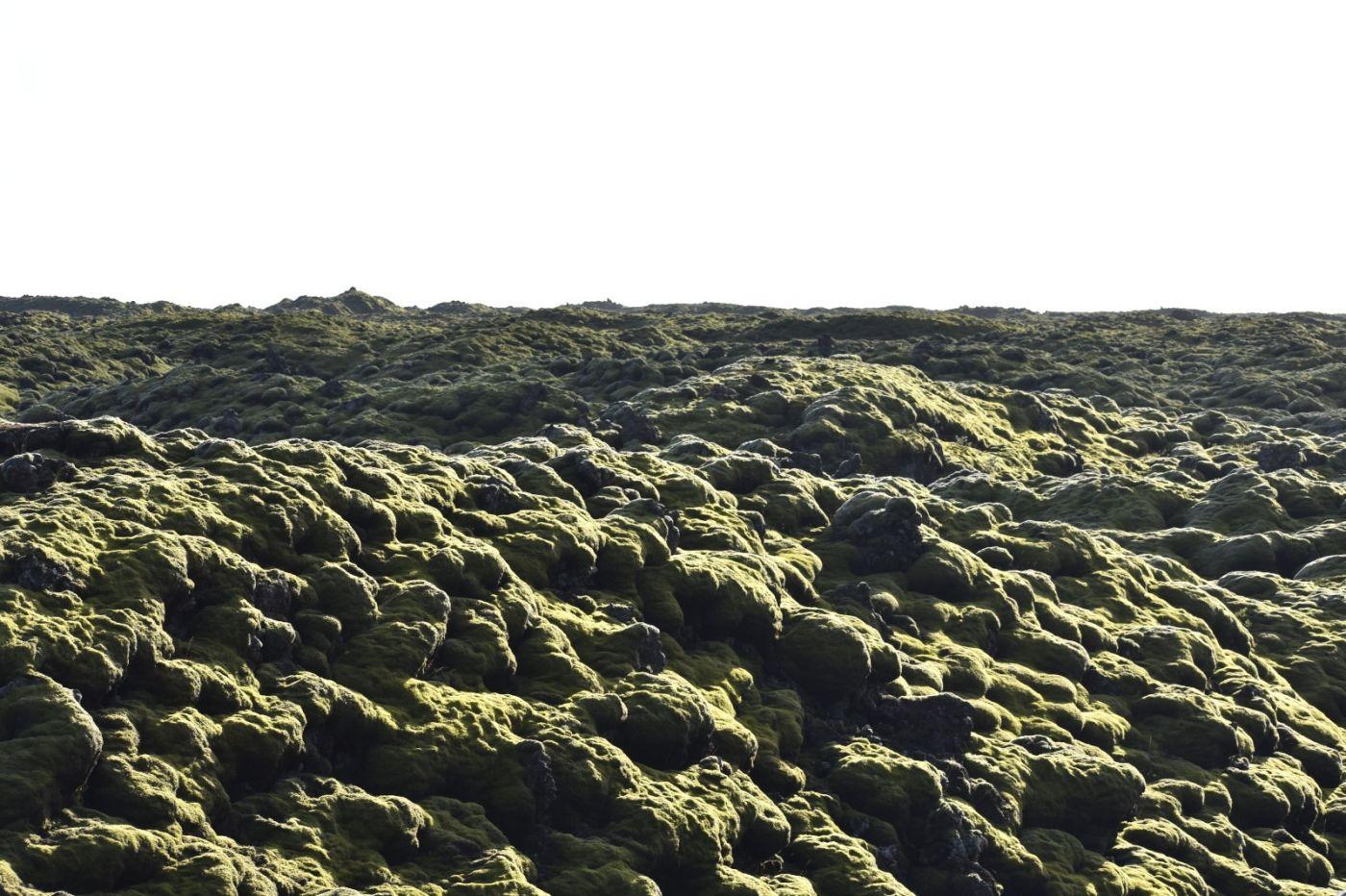 冰岛蓝湖温泉和苔原_图1-34