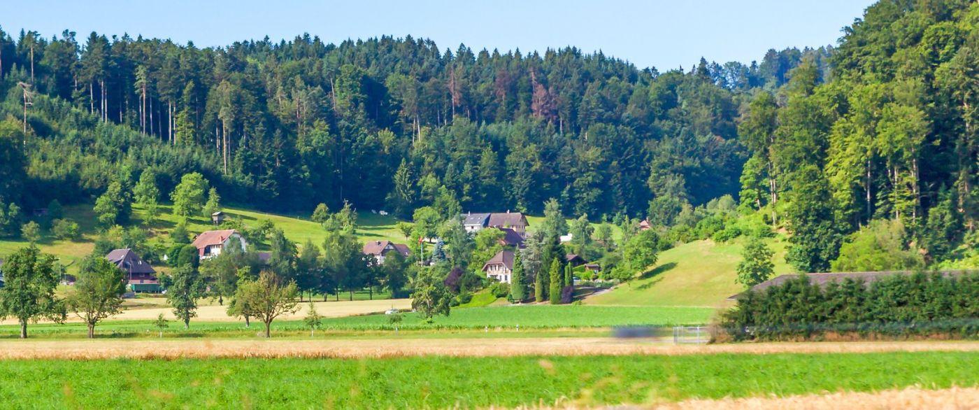 瑞士旅途,美丽的家园_图1-37