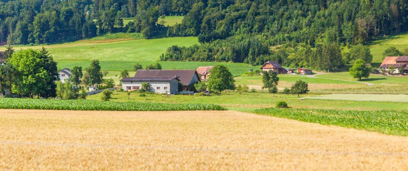 瑞士旅途,美丽的家园_图1-39