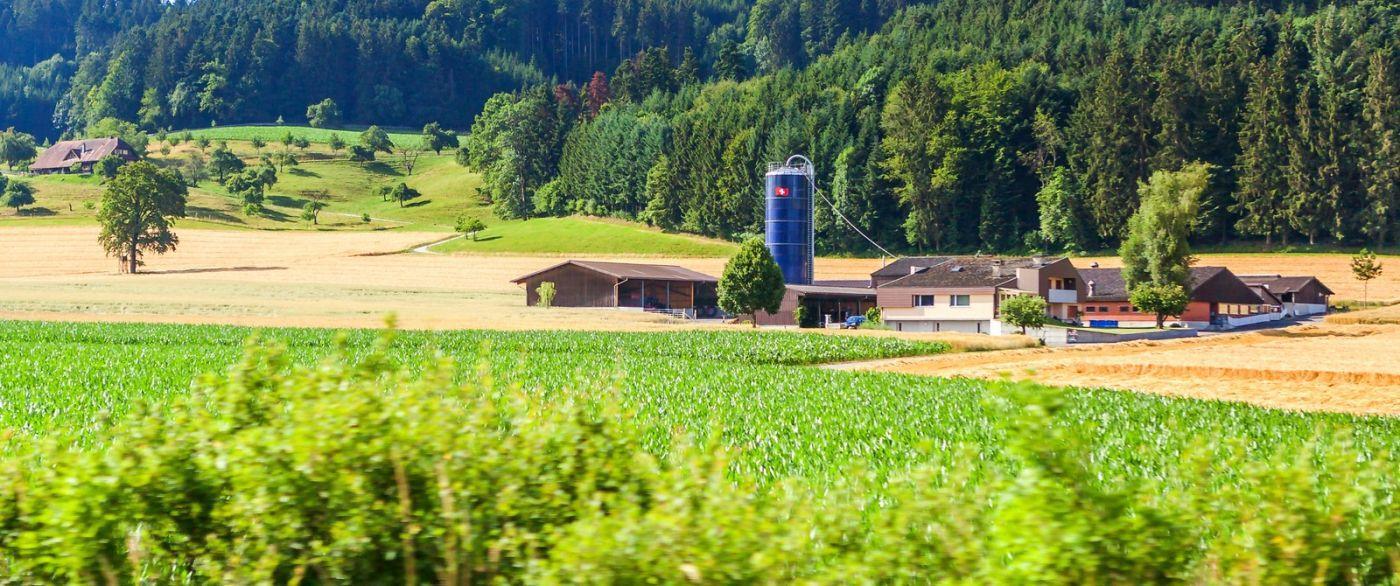 瑞士旅途,美丽的家园_图1-38