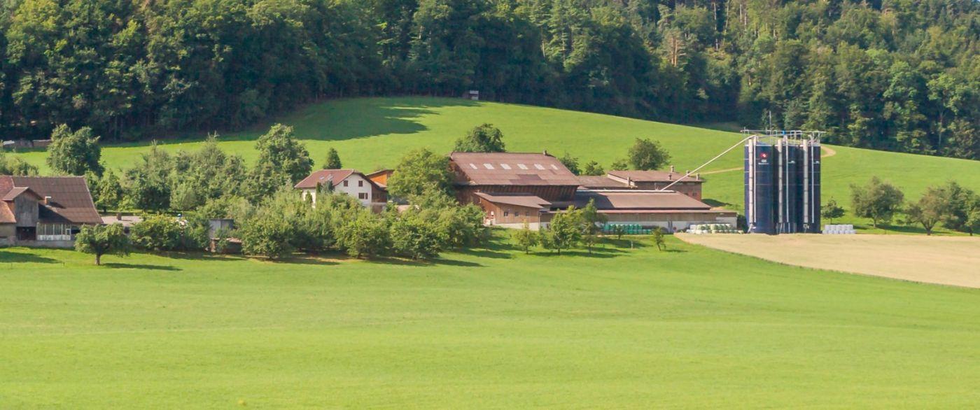 瑞士旅途,美丽的家园_图1-35